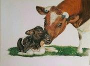 Amour vache.