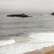 Gris de mer. Patricia Wagner