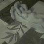 La femme martyre de la non assistance. Fatma Ikerrouiene