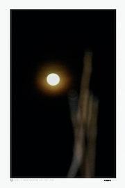 Quand le sage montre la lune l'imbécile regarde le doigt.