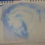 Etude cheval. Forangeart F. Baldinotti Peintre De l'air