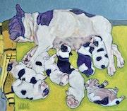 Bouledogue français maternity, 13.