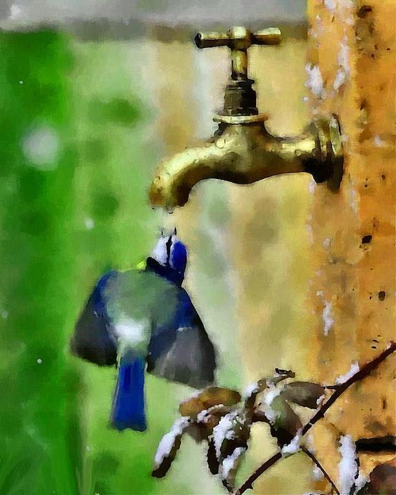 La goutte d'eau 2. Marie Carteron Marie Carteron