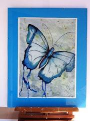 Le Morpho Bleu..