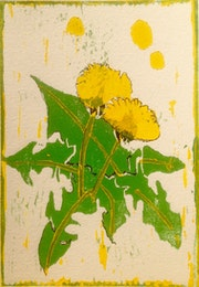 Pusteblume - Holzschnitt. Manuela Hinkeldey
