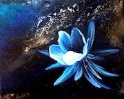 Fleur de Novalis.