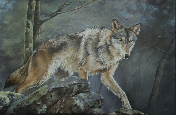 Wolf in the forest. Olga Tsvetkova Olga Tsvetkova