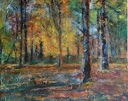 Jolies couleurs d'automne.