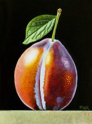 Plum Number One. Dietrich Moravec