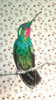 Oiseau 3. Misssan