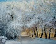 La neige en hiver.