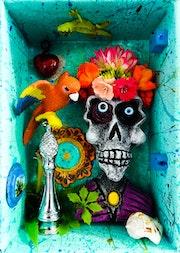 Cráneo No. Iii, La Tehuana y La Guacamaya. Xilote Ibarra