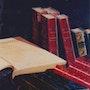 Bibliothèque. Fanny Bineau