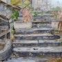 Le vieil escalier. Althéia - Martine Vinsot