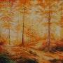 Douceur d'automne en forêt. Hosni Gharbi