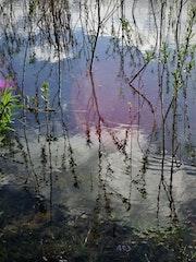 Speyside - Moray..