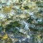 Composition eau 4/9. Thierry Daudier De Cassini