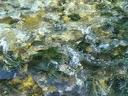Composition eau 4/9.