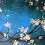 «Le Kimono Bleu»; Branche de cerisier du Japon. Sophie Duplain