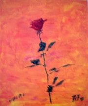 Rose rouge pour mon amour.