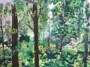 Forêt de moyenne montagne.