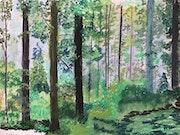 Forêt des Alpes du nord.