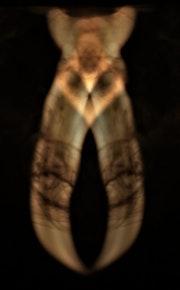 Bestiaire du Feu : superposition I. Olga Voscannelli