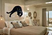 Panthera pardus melas 2. Thierry Bisch