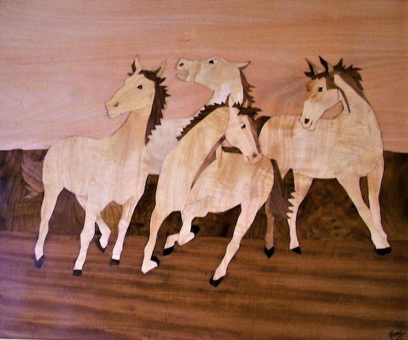 Les chevaux sauvages. Martine Perry Martine Perry