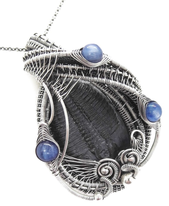 Trilobite Fossil Wire-Wrapped Pendant with Blue Kyanite in Sterling Silver. Heather Jordan Heather Jordan Jewelry