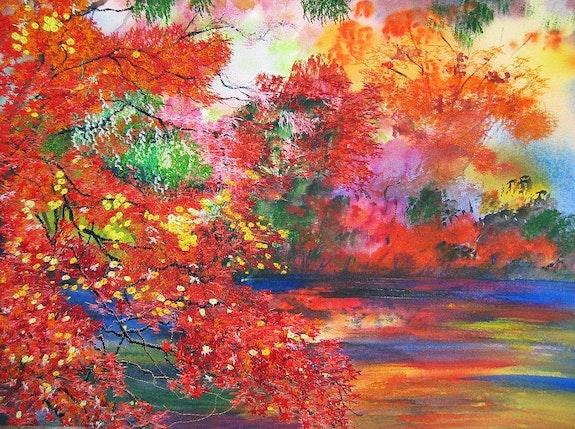 Autumn Aflame Japanese garden collection. Ann Dunbar Ann Dunbar