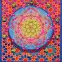 The 5th Dimension. Brahma Templeman