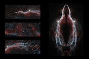 Veil nebula combined.
