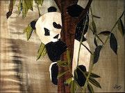 Petit panda. Martine Perry