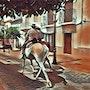 A caballo. Jon Fennel