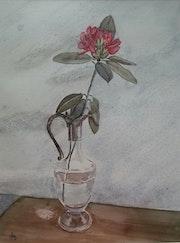 Aiguière et rhododendron rouge.