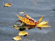 Message d'automne 2. A'm