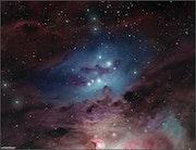 Ngc 1977, The Running Man Nebula. Randal Healey