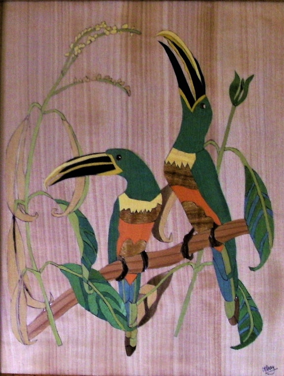 Les toucans. Martine Perry Martine Perry