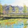 L'étang du parc du Moulin à Crosne (France). Claude Evrard