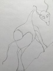 The horse. Zotova