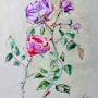 Roses. Vivi