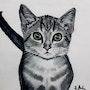 «Le chaton de Jasmin» - «La gatita de Jasmine». Emota