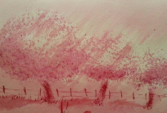 Pommiers en fleur. Jean-Michel Legras Jeanmidijeanmi