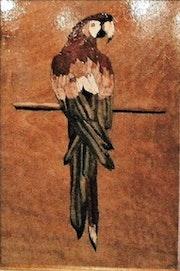 Le perroquet sur la branche. Martine Perry