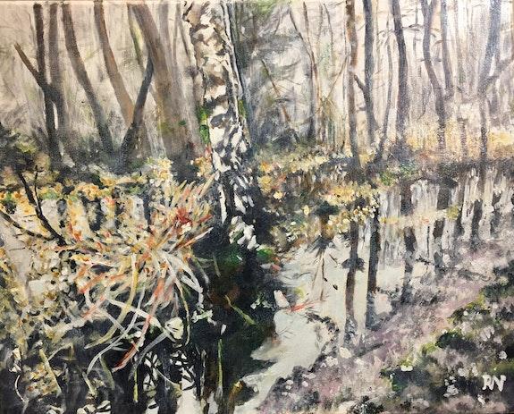 Le sous bois inondé.  Richard Nichanian
