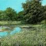 Mintered Garden number 2. Silvian Sternhagel