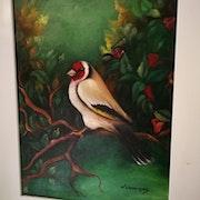 Oiseau sur arbre.