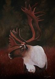 Hommage au caribou forestier en danger.