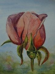 La Rose Eclose.
